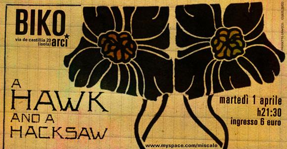 A Hawk and a Hacksaw