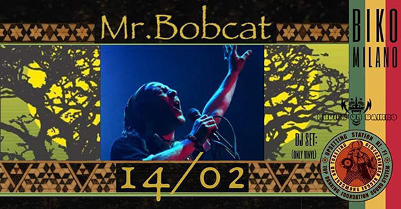 Mr Bobcat
